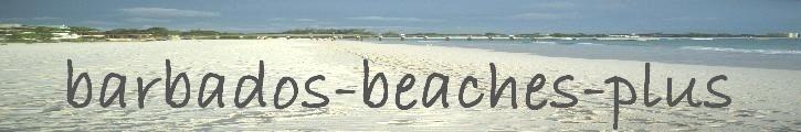 logo for barbados-beaches-plus.com